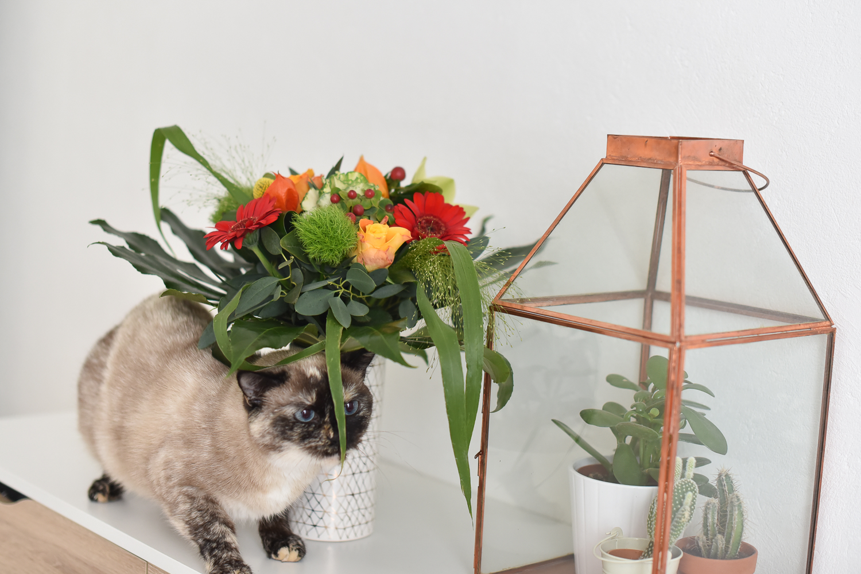blog-mode-rennes-fleurs
