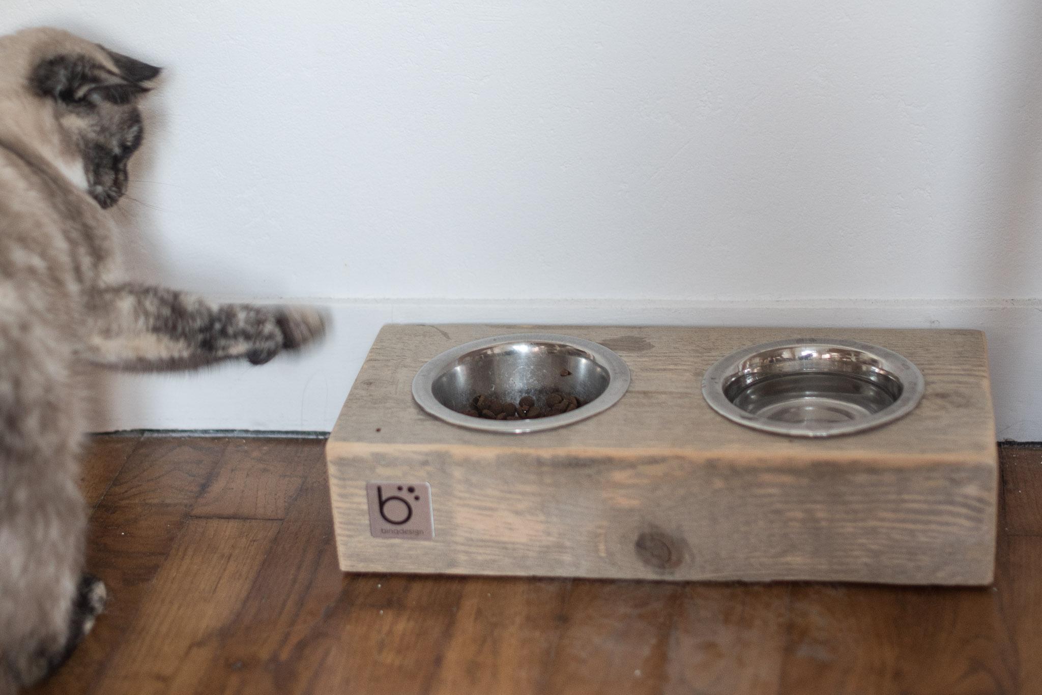 hariet et rosie idee cadeau chat chien