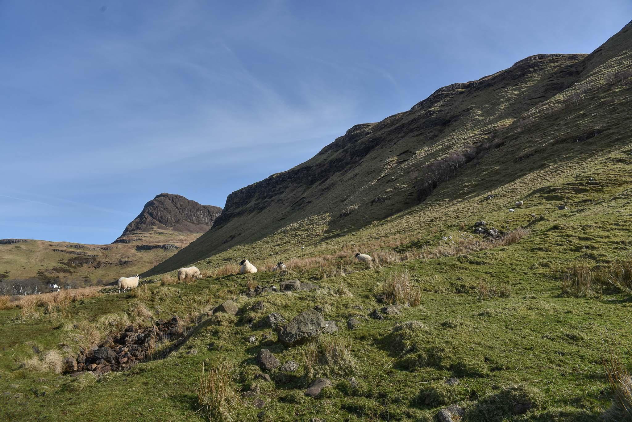 Road Trip in Scotland #3