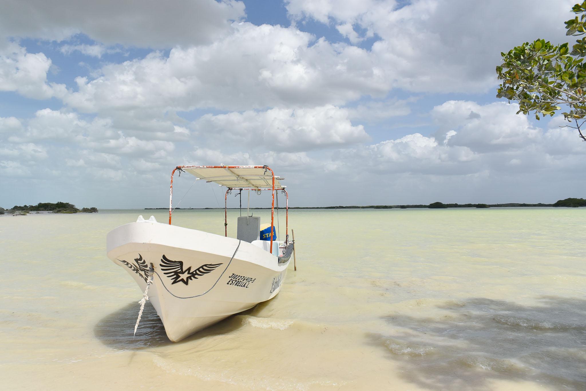visiter rio lagartos mexique tour en bateau
