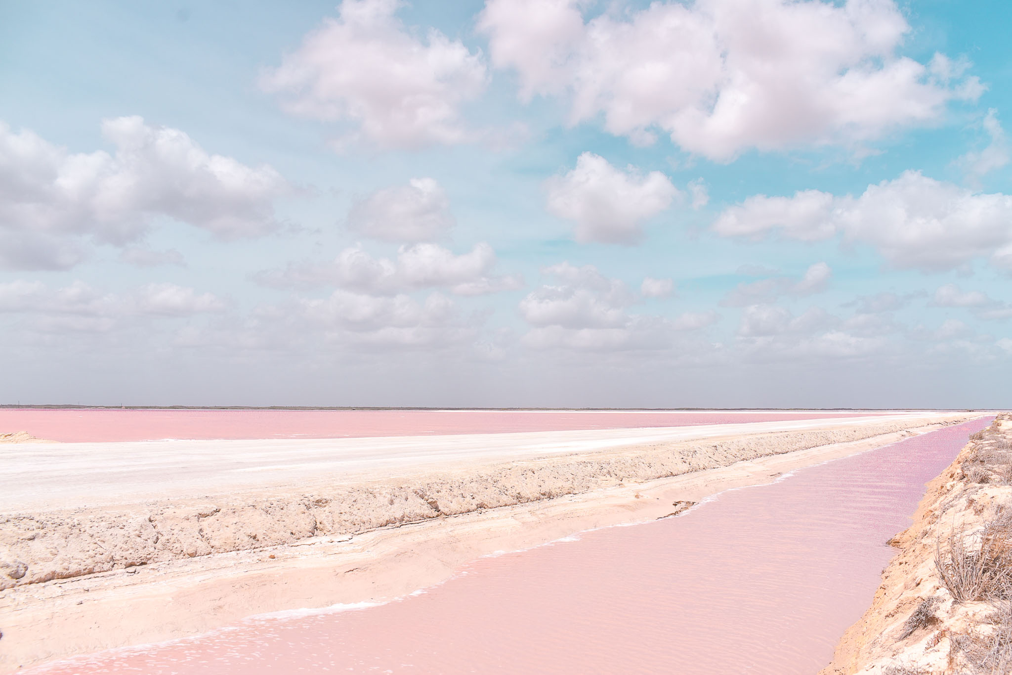 visiter las coloradas lagon rose mexique