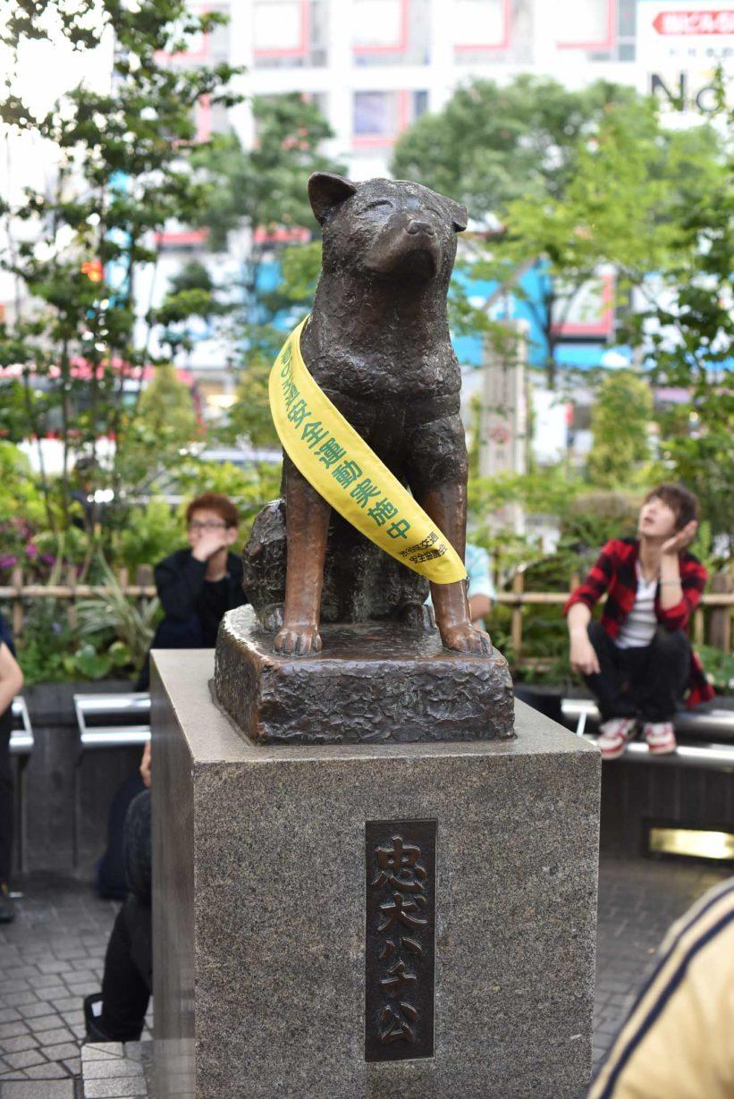 conseil pour un voyage a tokyo